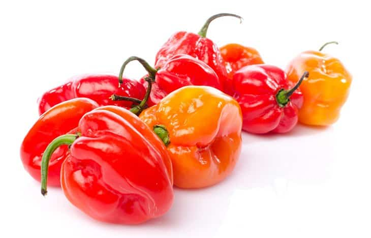 Habanero Pepper Substitutes For Jalapenos
