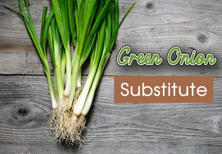 Substitute-For-Green-Onion